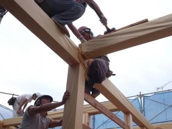 木組みの家「高円寺の家」建方です
