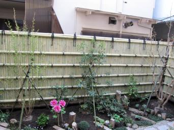 木組みの家「高円寺の家」庭