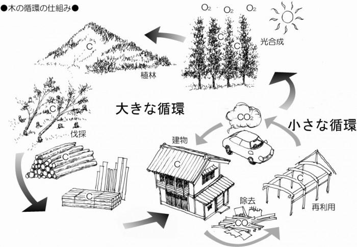 mini-木の循環の仕組み