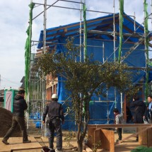 木組みの家「我孫子の家2」構造見学会